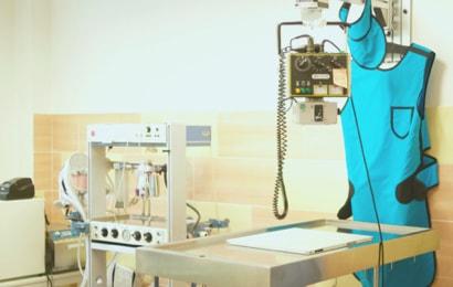 rentgen ainhalčka na veterině