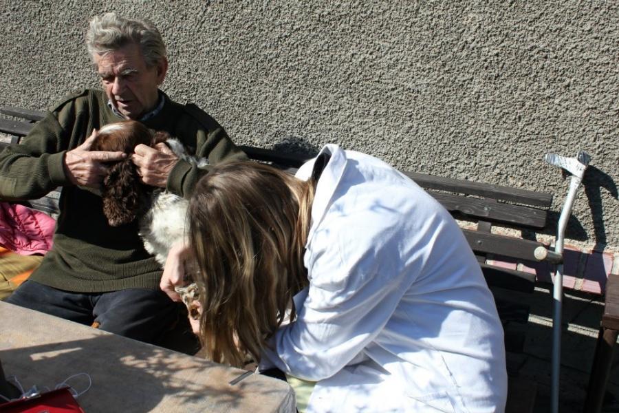 veterinářka kontroluje psa starého pána uněj na zahradě na výjezdu